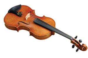 DEE1504Cal-Fiddle