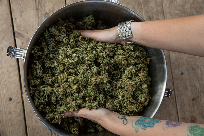 Marijuana in Starks, Maine