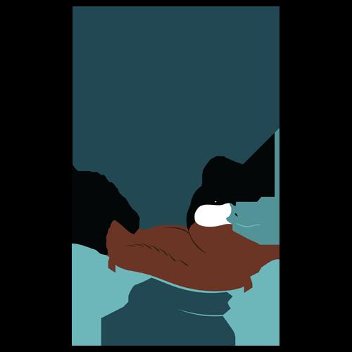 Sabattus Pond