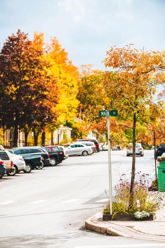 Maine Fall Foliage Tour, Down East Magazine