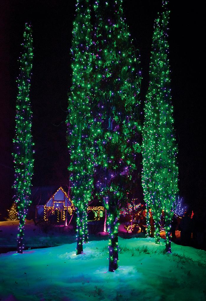 Christmas Light Show Maryland