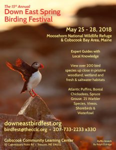 Down-East-Spring-Bird-Festival-2018