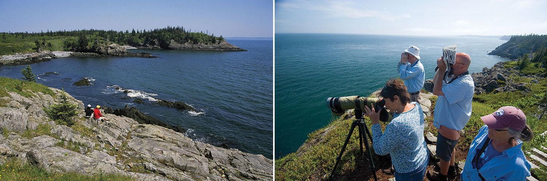 Hamilton Cove Preserve and Boot Head Preserve, Maine