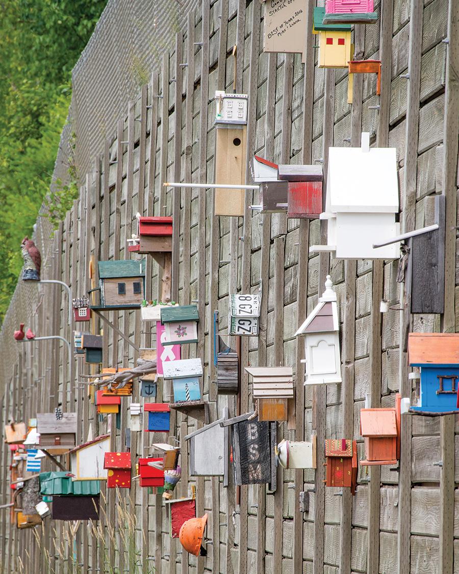 Moscow Birdhouses