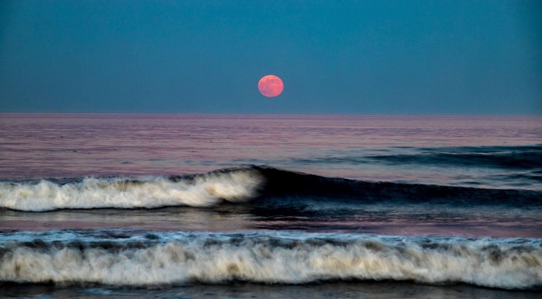 Old Orchard Beach – Bob Pecchia