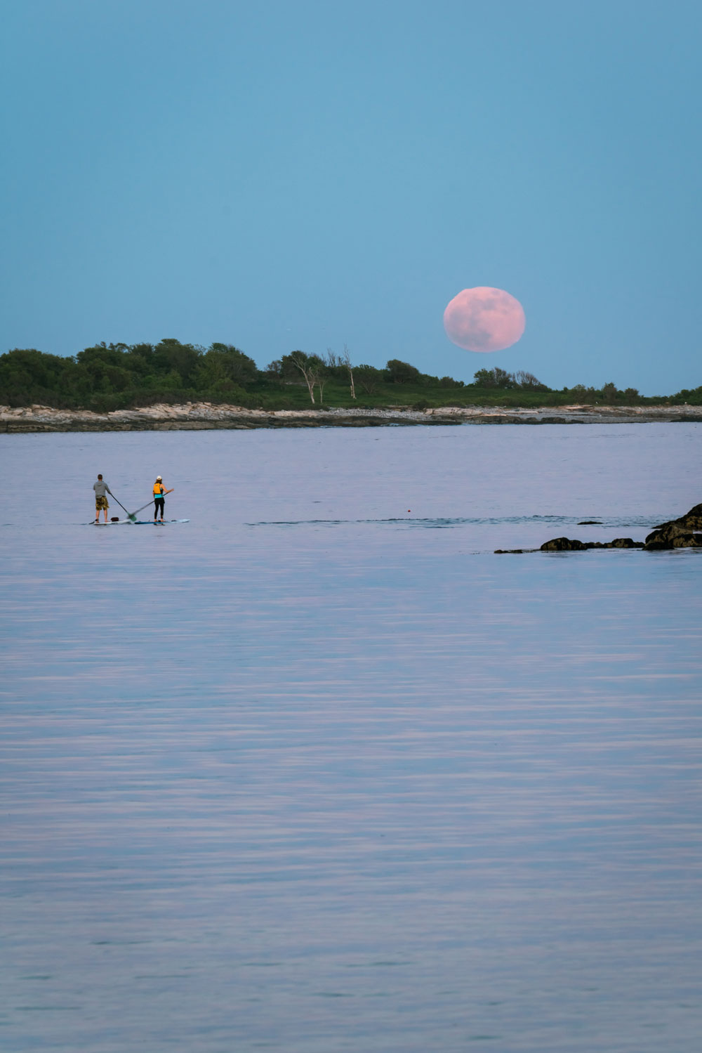 Willard Beach – Ethan Van Dusen