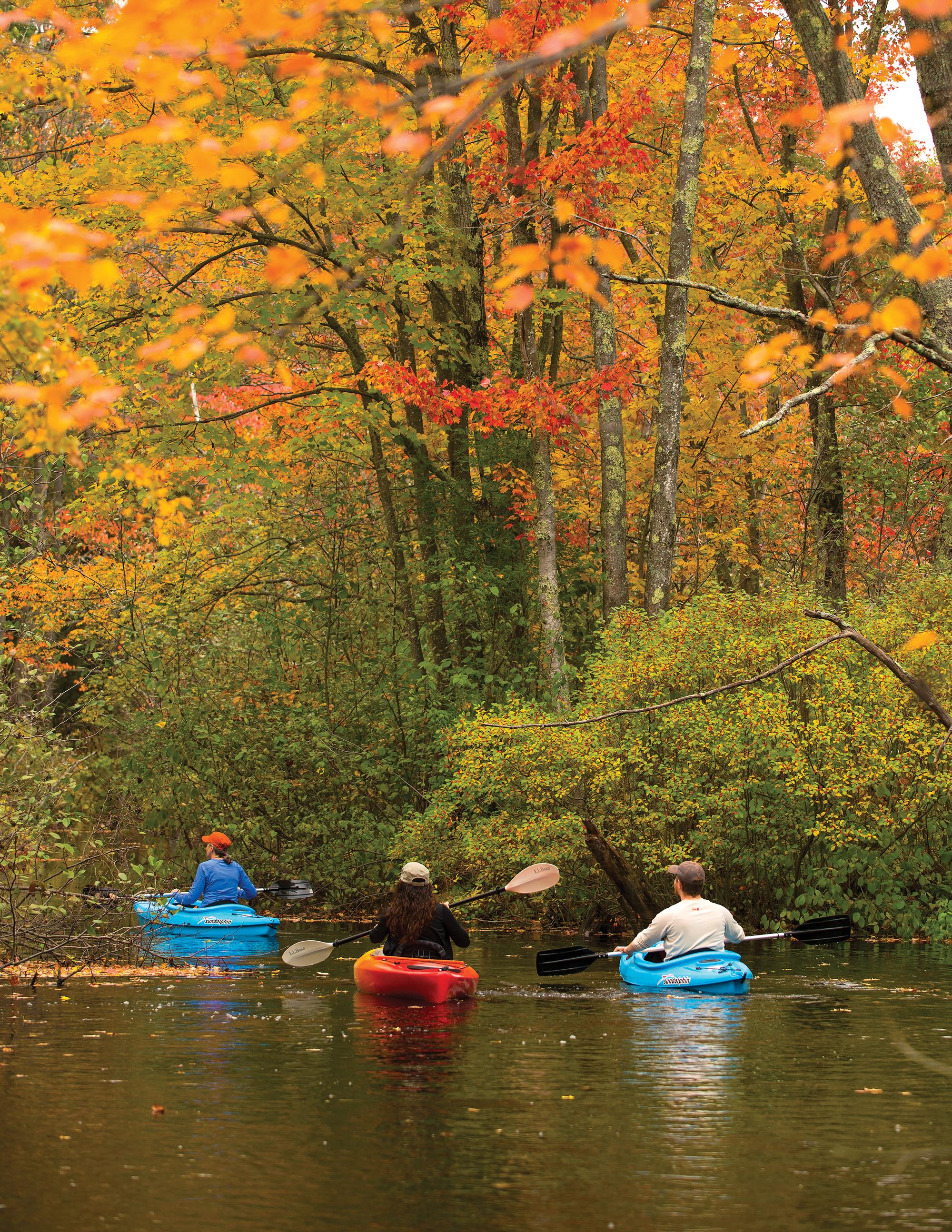 A York County Autumn