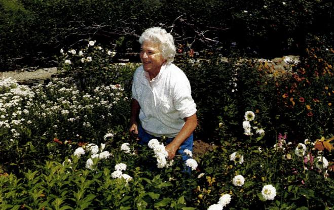 Barbara Bush gardening in Kennebunkport