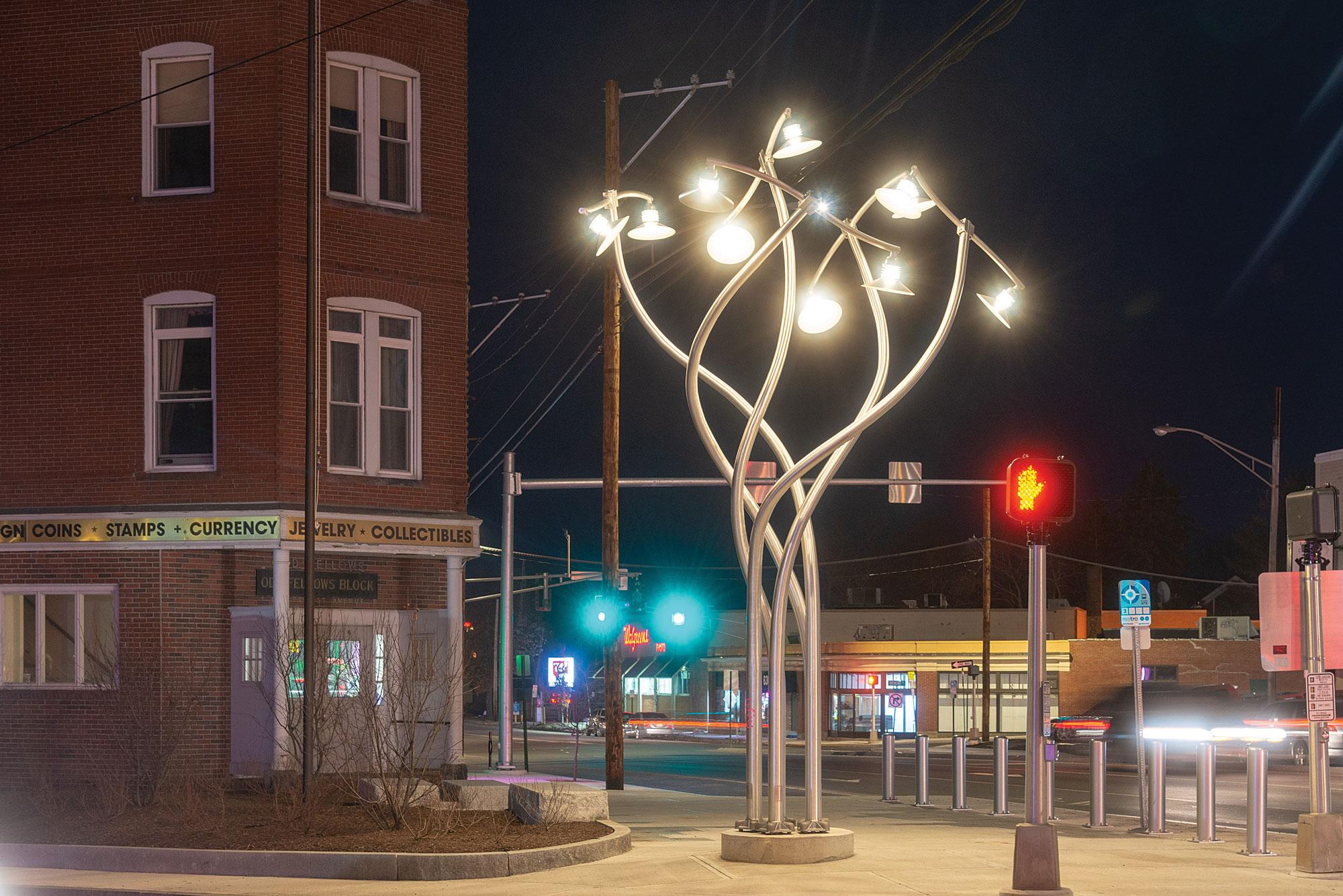 Luminous Arbor