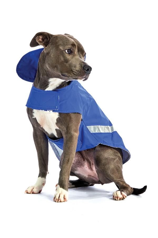 Doggie Safe n Dry Rainwear