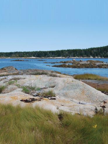 Maine Coast Heritage Trust, The Basin Preserve
