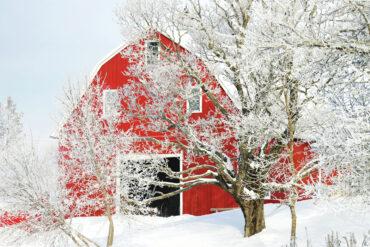 Where in Maine February 2020