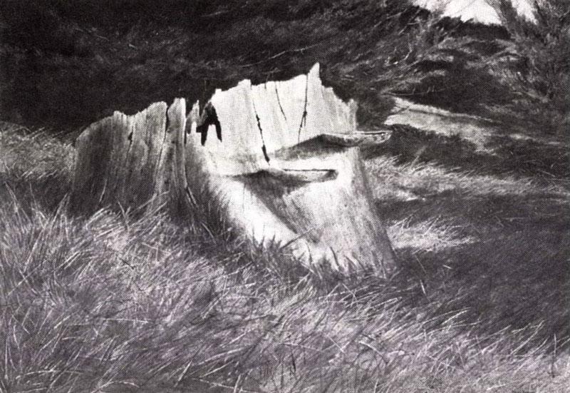 At Pemaquid, 1969, by David Hanna