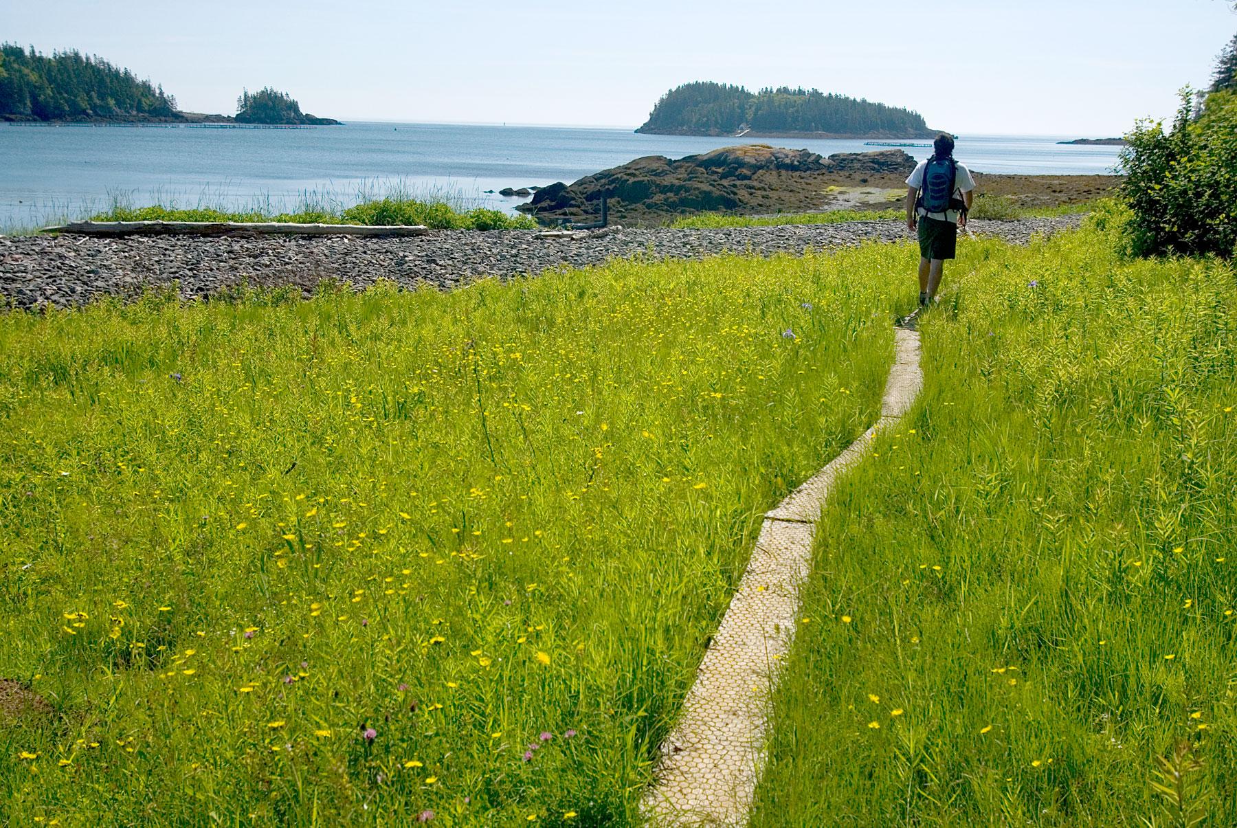 Nature Walk, Lubec, Maine