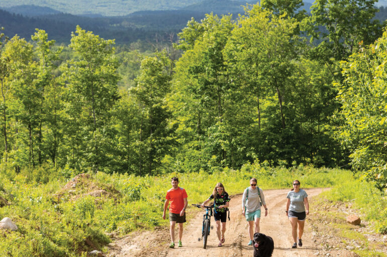 community forests in maine