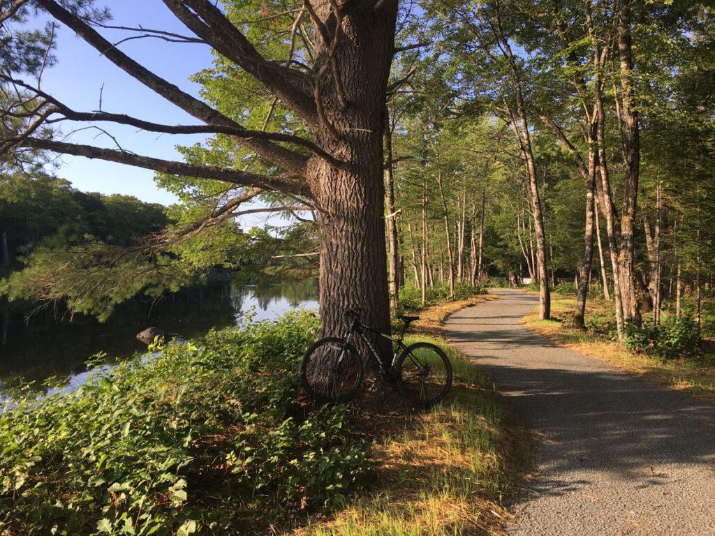 Penobscot River Trails