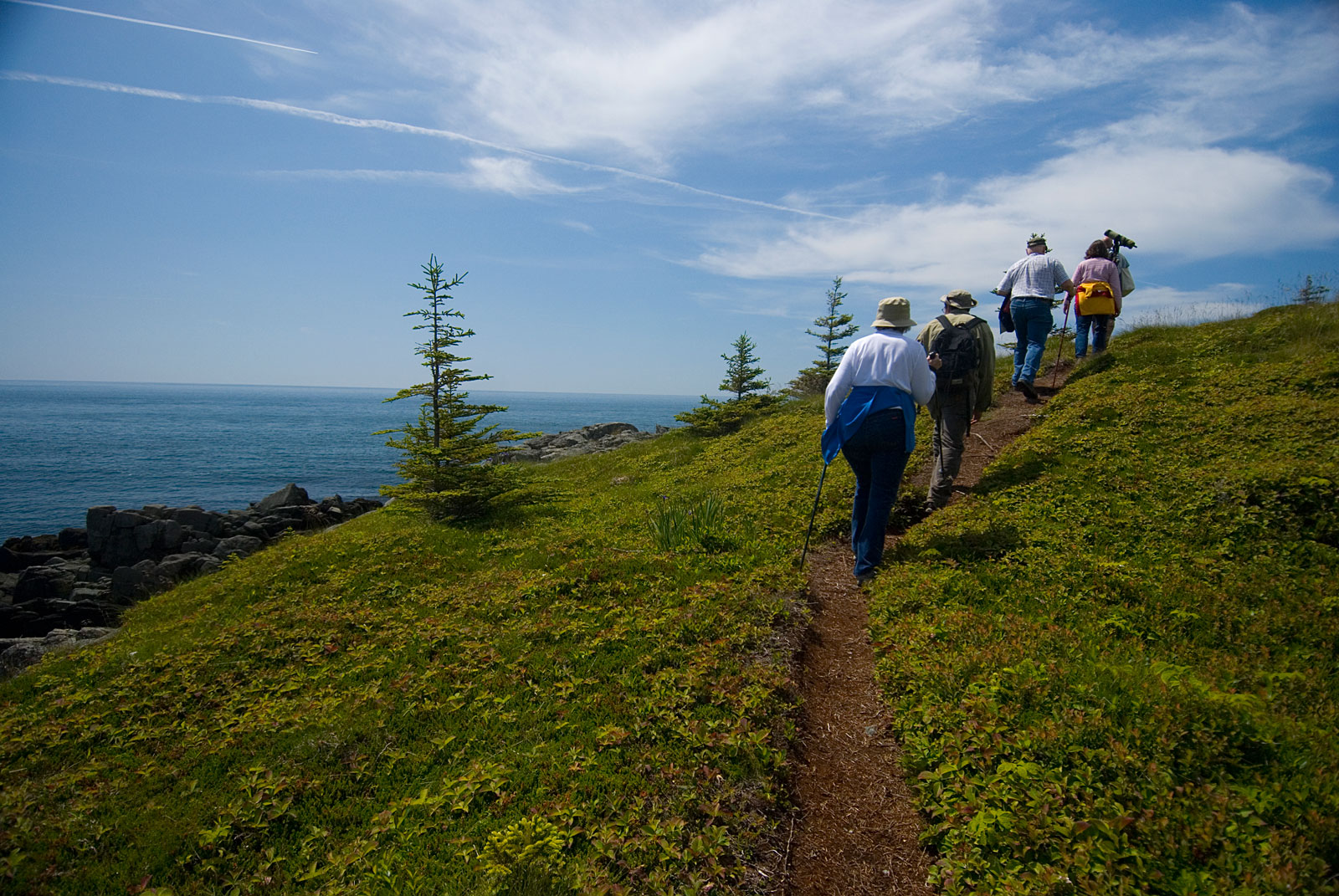 Nature walks Lubec, Maine
