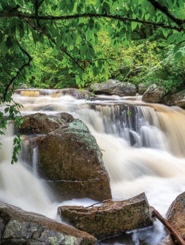 Big Falls Preserve, New Gloucester