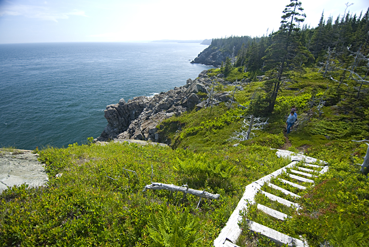 Boot Head Preserve, Lubec, a Maine Coast Heritage Trust preserve