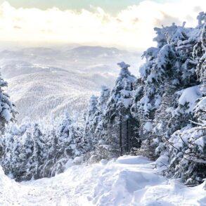 Coburn Mountain, David Whitney's favorite Maine place
