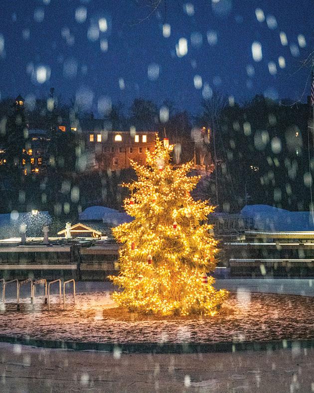 The Rockport Harbor Christmas tree