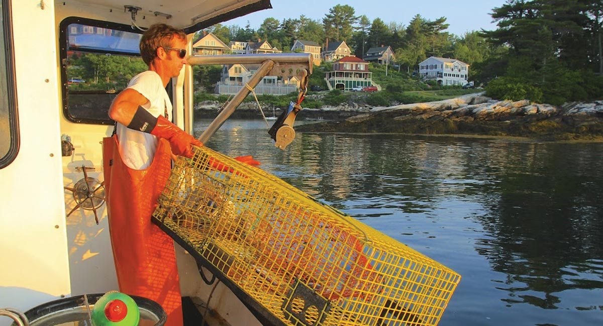 Boothbay Harbor lobsterman working on his boat