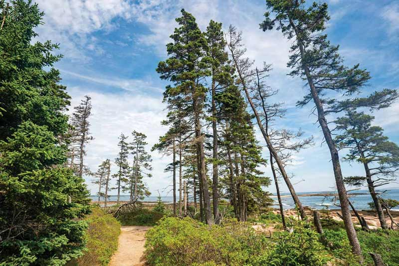 The 30 Best Trails in Acadia National Park